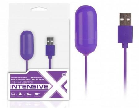 Виброяйцо фиолетвое Mini Vibrator Intensive с USB подключением